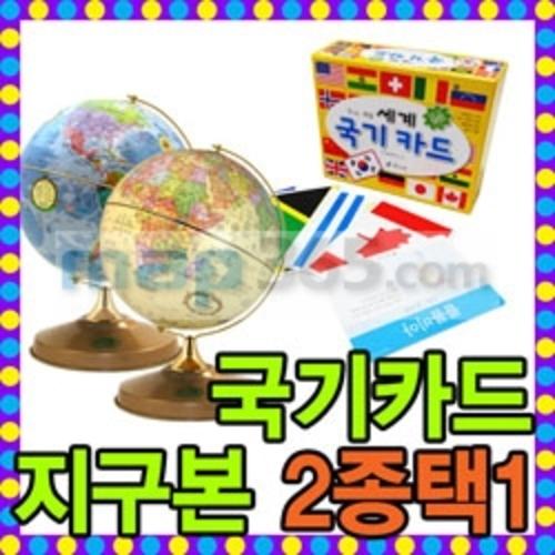 Cs 맵소프트 24cm블루자전지구본+세계국기카드 (24-BG)