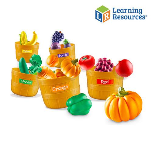 Cs (러닝리소스) 과일야채 색깔구별세트(3060)