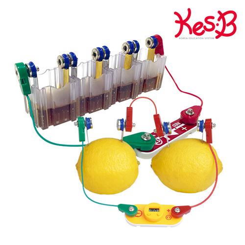 Cs (캐스B)네이처 척척박사전기회로과일로전기만들기(2170)